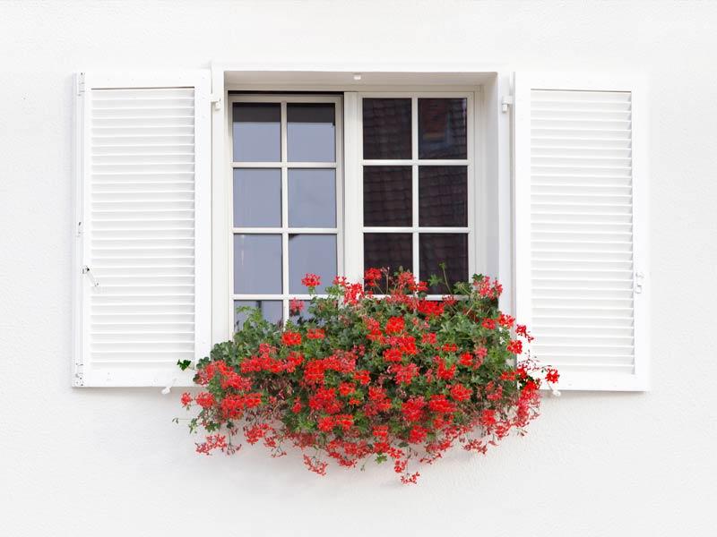 Fenster Tischlerei Lirsch